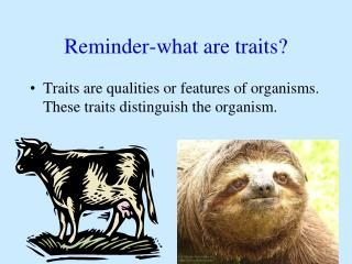 Reminder-what are traits?