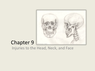 Chapter 24 Spinal Trauma