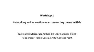 Workshop 1  Networking and innovation as a cross-cutting theme in RDPs