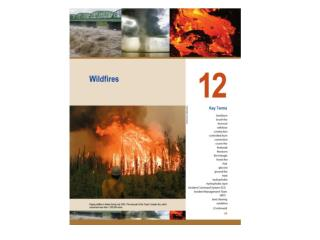Phases of wildfires