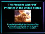 The Problem With  Pet  Primates in the United States