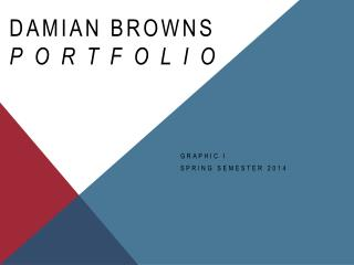 DAMIAN BROWNS PORTFOLIO