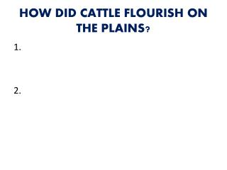 HOW DID CATTLE FLOURISH ON THE PLAINS?
