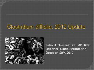 Clostridium difficile: 2012 Update