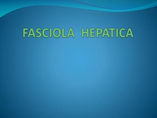 fasciola hepatica ppt