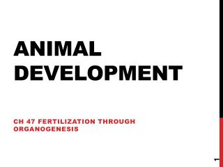 Animal Development