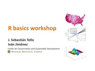 R basics workshop