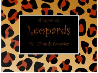 Leopards By:  Hannah Crowder