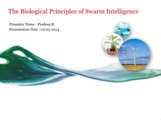 The Biological Principles of Swarm Intelligence