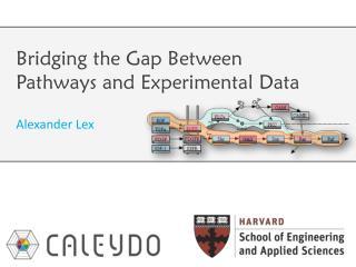 Bridging the  Gap Between Pathways  and  Experimental Data
