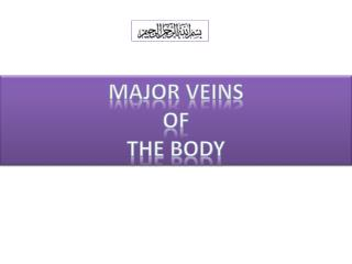 Major Veins  of  the body