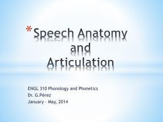Speech Anatomy and  Articulation