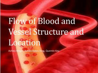 Flow of Blood and Vessel Structure and Location