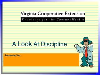What is discipline