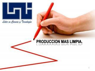 PRODUCCION MAS LIMPIA.