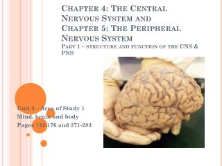 Unit 3 – Area of Study 1 Mind, brain and body Pages 132-176 and 271-283