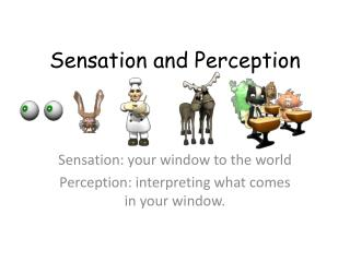 Sensation: your window to the world  Perception: interpreting what comes in your window.