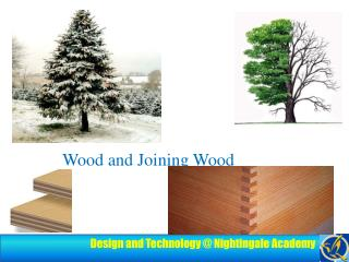 Wood and Joining Wood