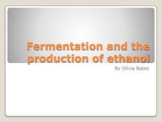 Fermentation and the production of ethanol