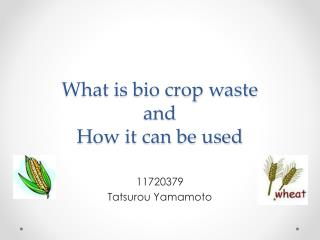What is bio crop waste and How it can be used