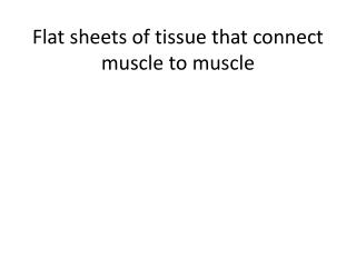 Flat sheets of tissue that connect muscle to muscle
