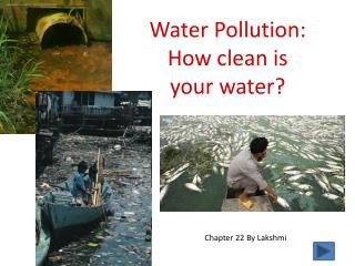 Water Pollution: How clean is  your water?