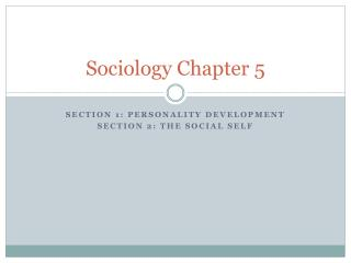Sociology Chapter 5