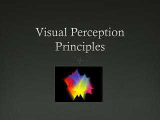 Visual Perception Principles