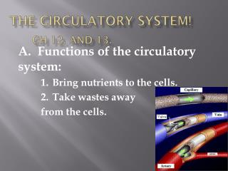 The Circulatory System! Ch  12. and 13.