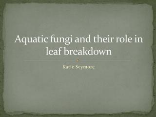 Aquatic fungi and their role in leaf breakdown