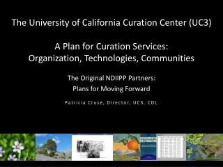 The Original NDIIPP Partners:  Plans for Moving Forward