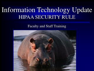 Information Technology Update HIPAA SECURITY RULE