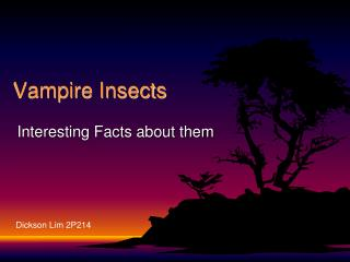 Vampire Insects