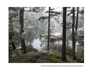 North Pond Outlet, Appalachian Trail, Elliotsville Township Maine (April)