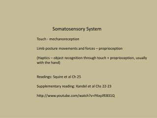 Somatosensory  System Touch -  mechanoreception