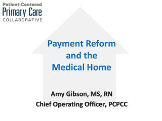 Amy Gibson, MS, RN Chief  Operating  Officer, PCPCC