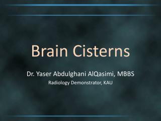 Brain Cisterns