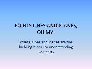 POINTS LINES AND  PLANES, OH MY!