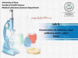 Lab 6: Enumeration of  coliforms,  fecal coliforms and E. coli in foods