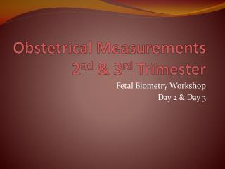 Obstetrical Measurements 2 nd  & 3 rd  Trimester