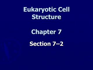 Eukaryotic Cell Structure Chapter 7