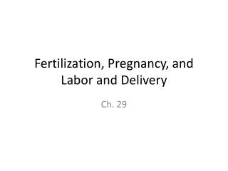 Fertilization, Pregnancy, and Labor and Delivery