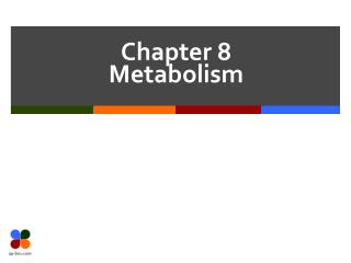 Chapter 8 Metabolism
