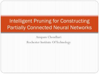 Intelligent Pruning for Constructing Partially Connected Neural Networks