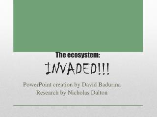 The ecosystem: INVADED!!!
