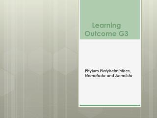 Learning Outcome G3