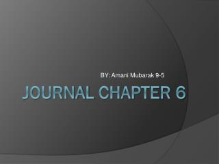 Journal chapter  6