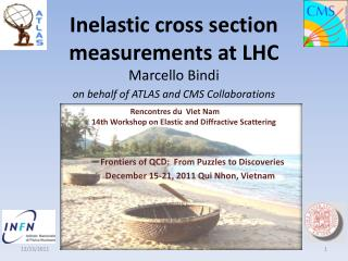 Inelastic cross section measurements at LHC