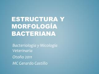 Estructura y Morfología BACTERIANA