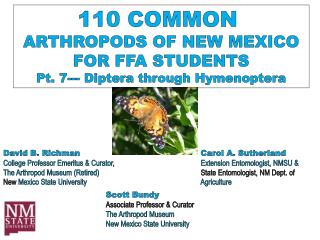 110 COMMON  ARTHROPODS OF NEW MEXICO FOR FFA STUDENTS Pt. 7---  Diptera  through Hymenoptera